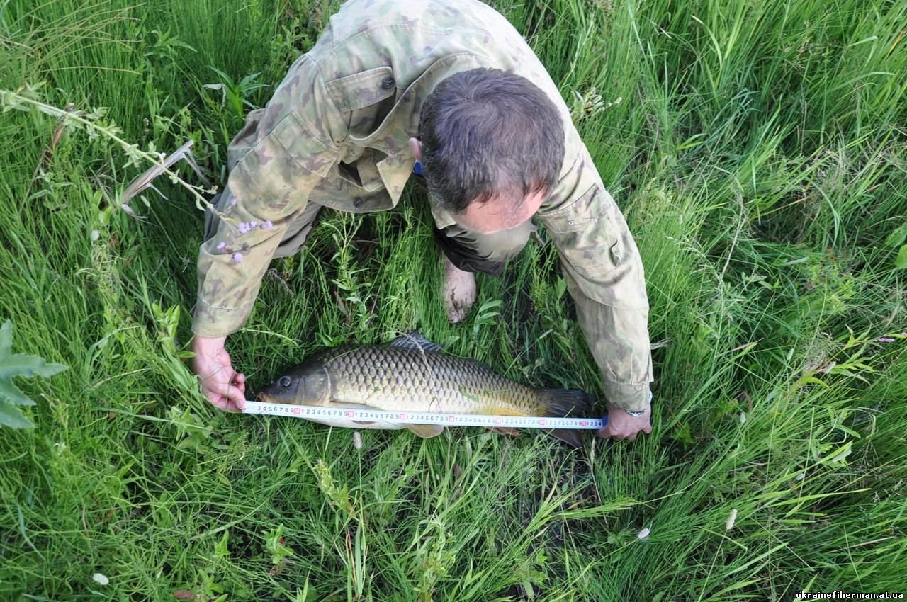 рыбалка в харьковской области харьков форум
